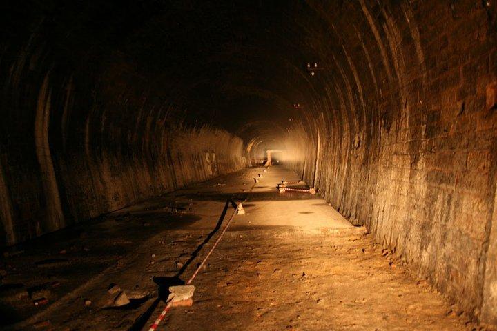 Der Rosensteintunnel – faszinierende Welt mitten in Stuttgart