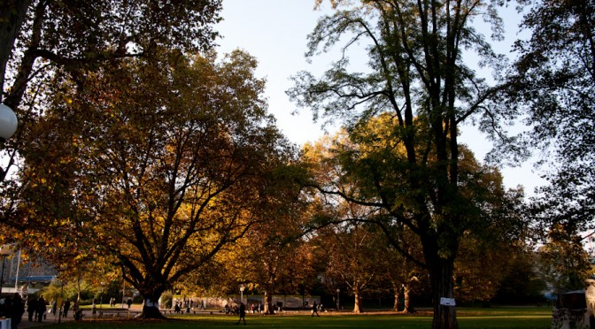 Unser Park – unsere Geschichte